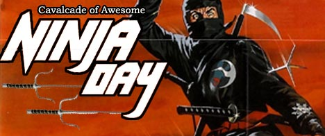 Ninja Day Banner